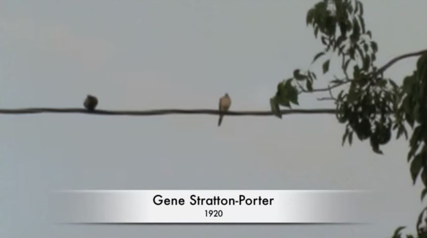 After Limberlost: Gene Stratton-Porter's Life in California directed by Jessica Renslow