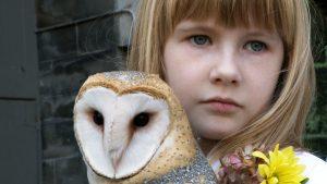 Owl Girl in One October