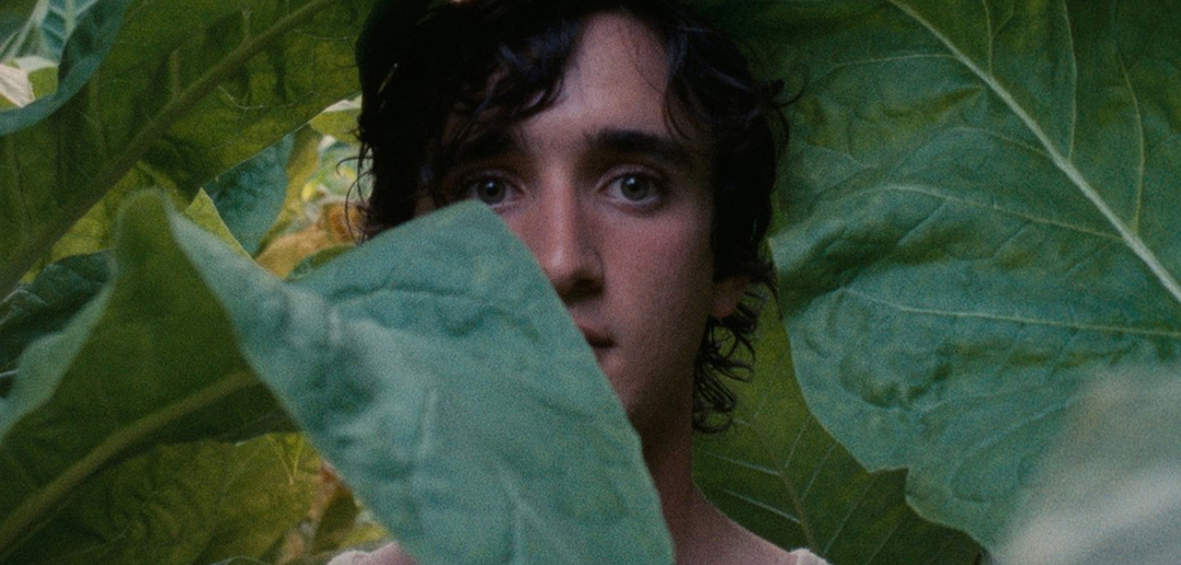 Happy As Lazzaro / Lazzaro Felice